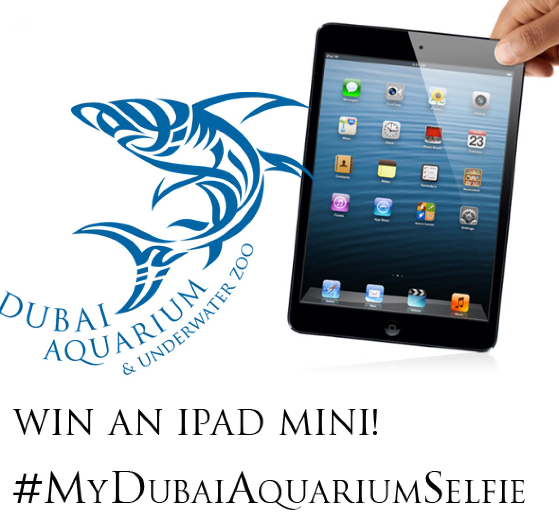 Dubai-Mall-Aquarium-Selfie